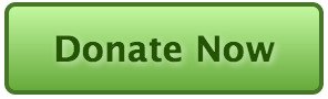 Donate-Button-green
